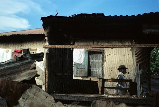 Sapa congolesa