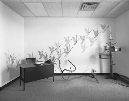 Exposición Lynne Cohen